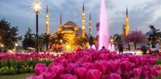 Истанбул - Фестивал на лалето